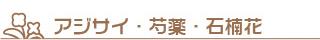 アジサイ・芍薬石・楠花